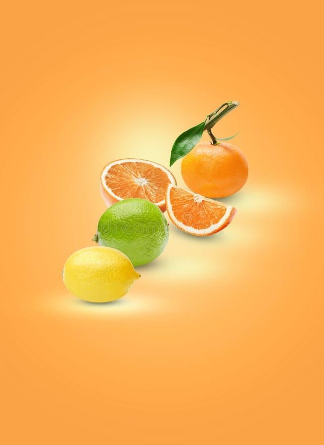 Sammansättning av olika citrusfrukter på en orange bakgrund Bearbeta för konst av skuggor och viktig arkivbilder