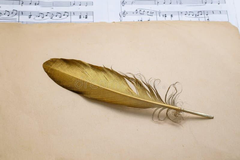 Sammansättning av symbolet av en guld- fågelfjäder som ligger på gammal en gulnad bakgrundsth och med melodin av musik arkivfoto