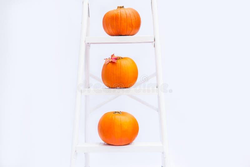 Sammansättning av tre pumpor med lönnlövet på trappa på momenten av den croped ringde stegen på isolerad vit bakgrund Höst ho royaltyfri fotografi