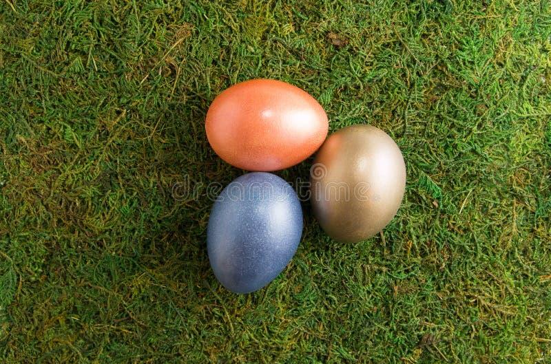 sammansättning easter Påsken färgade ägg ligger på en mossa Top beskådar sammansättning easter royaltyfri foto