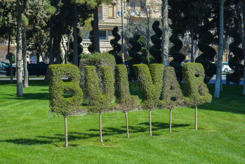 Sammansättning från växter i den Baku boulevarden royaltyfri bild