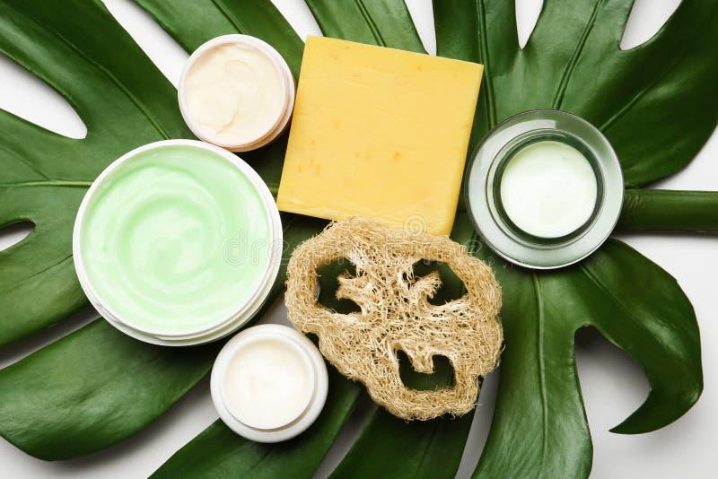 Sammansättning med kroppomsorgprodukter, test och det gröna bladet på vit bakgrund arkivbild