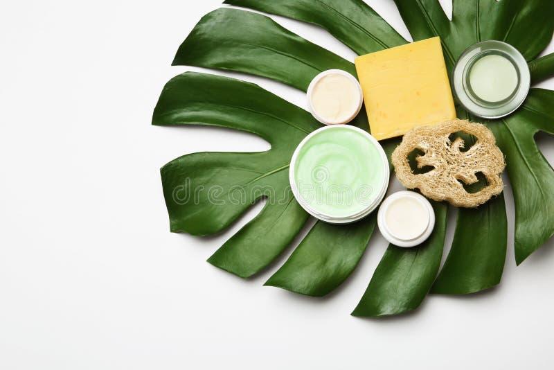 Sammansättning med kroppomsorgprodukter, test och det gröna bladet på vit bakgrund, bästa sikt arkivfoton