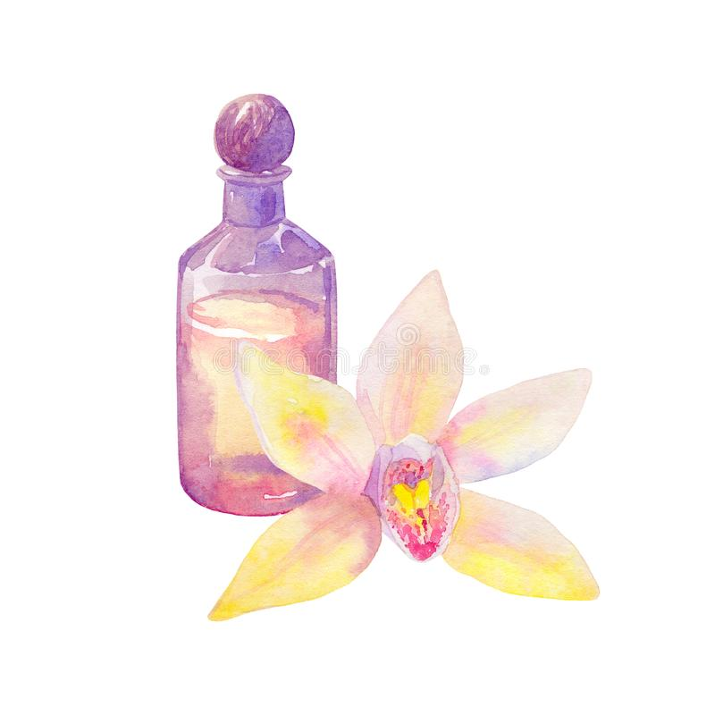 Sammansättning med nödvändig olja i flask- och orkidéblomma Hand dragen vattenfärgillustration bakgrund isolerad white royaltyfri illustrationer