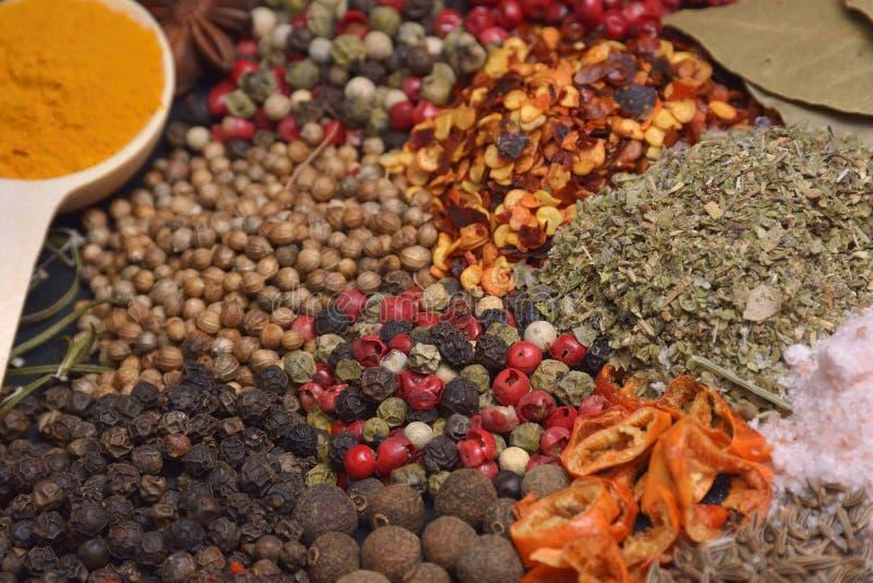 Sammansättning med olika kryddor och örter royaltyfri bild