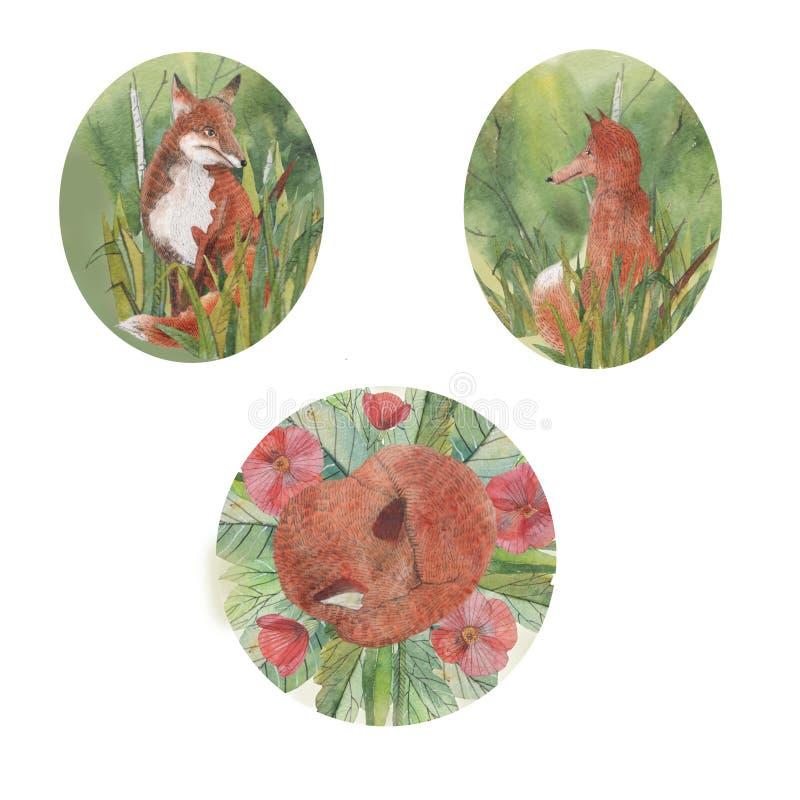 Sammansättningar med rävar, träd och sidor royaltyfri fotografi