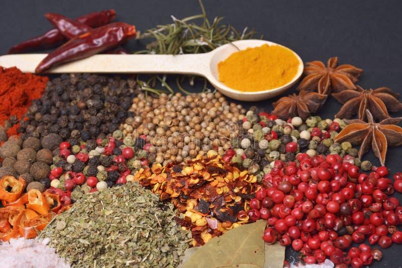 Sammansättningen med olika kryddor och örter royaltyfri foto