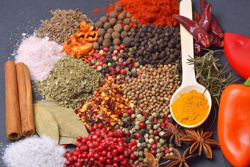 Sammansättningen med olika kryddor och örter royaltyfria foton