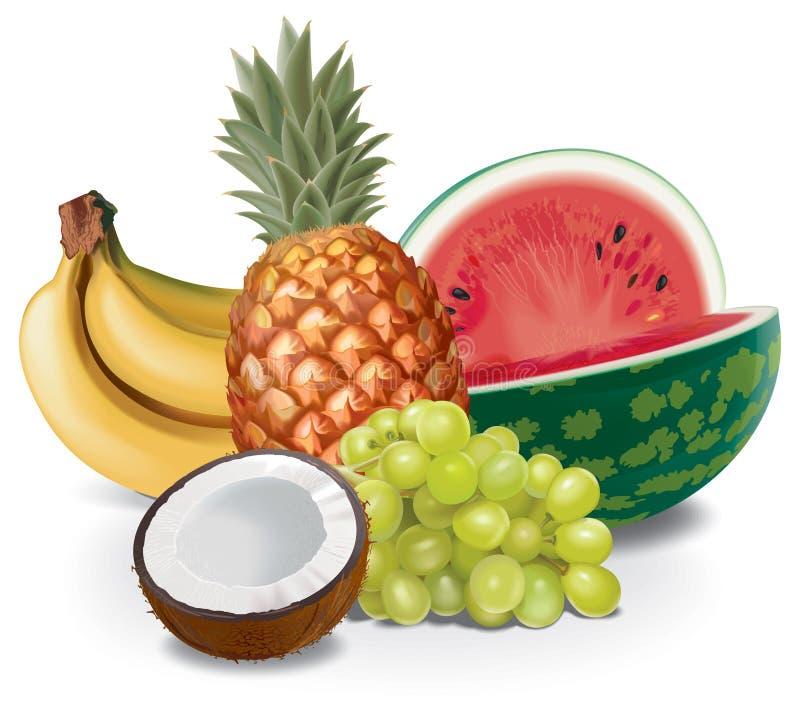 sammansättningsfrukter stock illustrationer