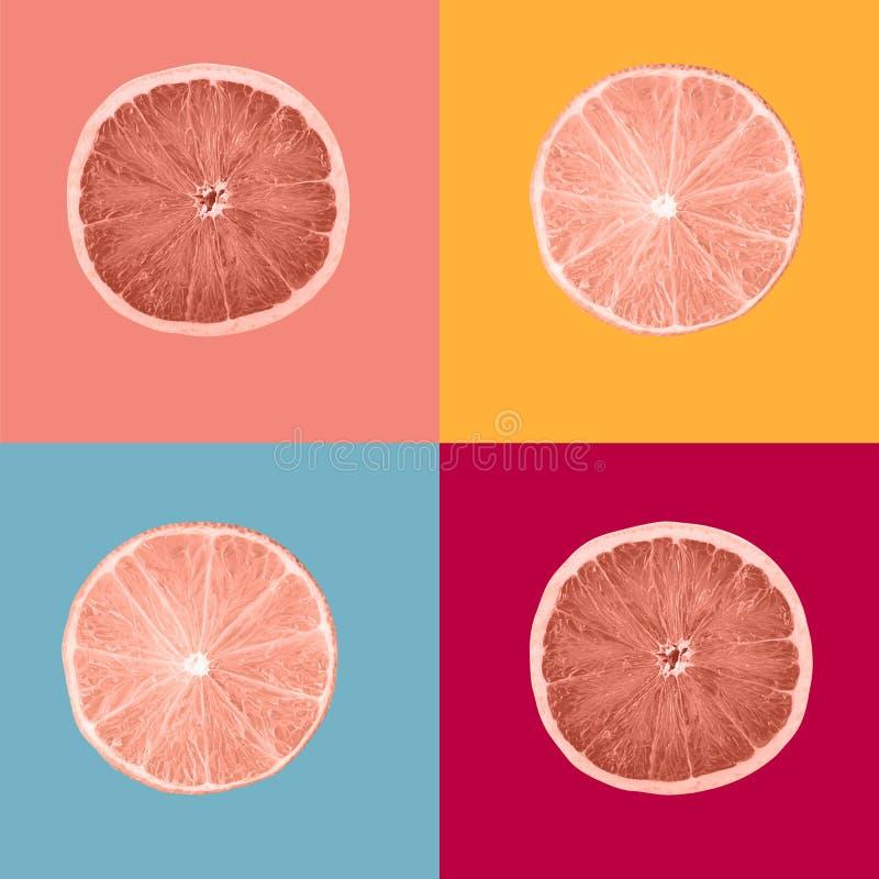 Sammansättningskorallfärg målade skivor av citronfrukter fotografering för bildbyråer