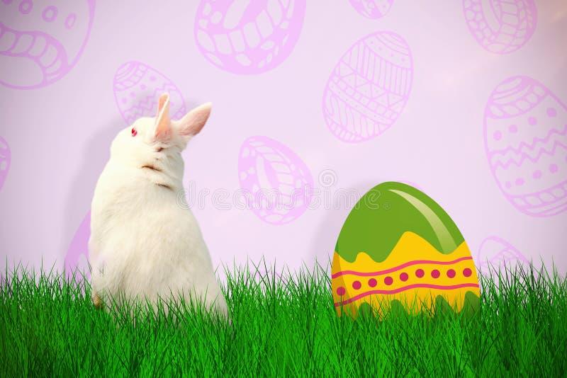 Sammansatt bild av den bakre sikten av gullig kanin royaltyfri illustrationer