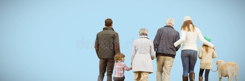 Sammansatt bild av den lyckliga familjen som går med deras hund arkivfoton