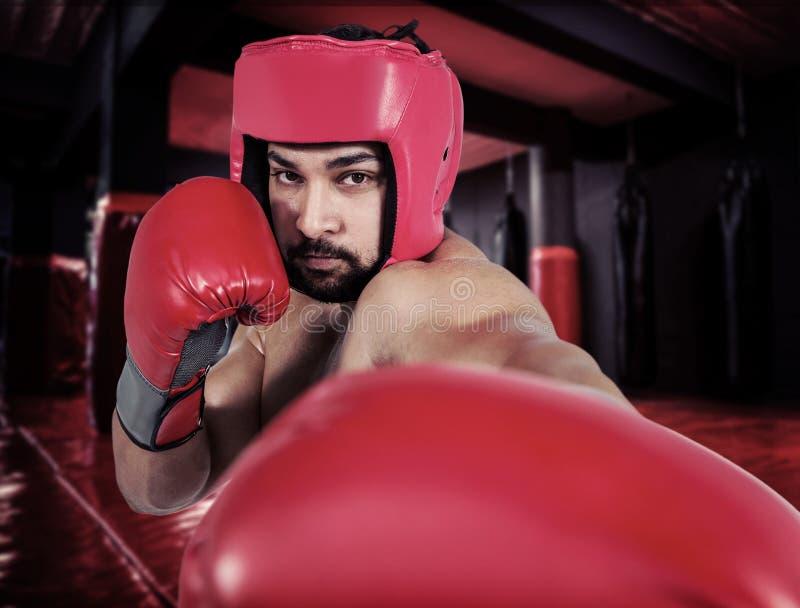 Sammansatt bild av muskulös manboxning i handskar royaltyfria bilder