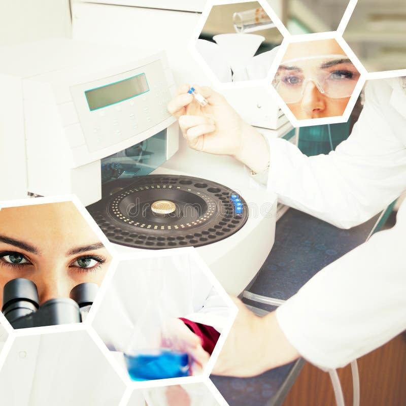 Sammansatt bild av ståenden av vetenskapsstudenter som gör ett experiment royaltyfria foton