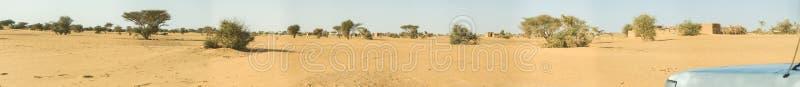 Sammansatt panorama av den sudanesiska öknen med några representativa små träd och buskar och ett gyttjahus i avståndet arkivbild
