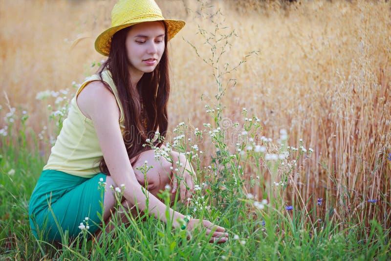 Sammanträde för den unga kvinnan nära den havrefältet och plockningen blommar arkivfoton