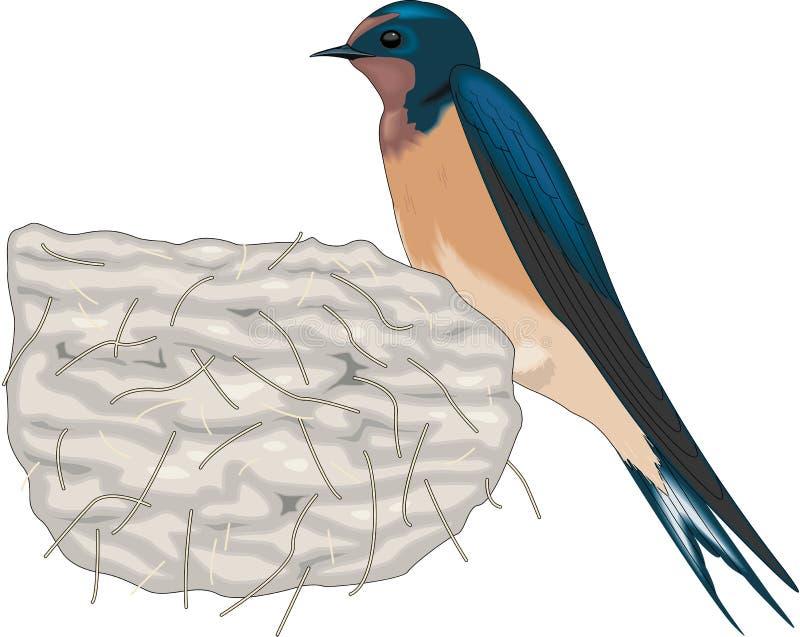Sammanträde för ladugårdsvala på redeillustration royaltyfri illustrationer