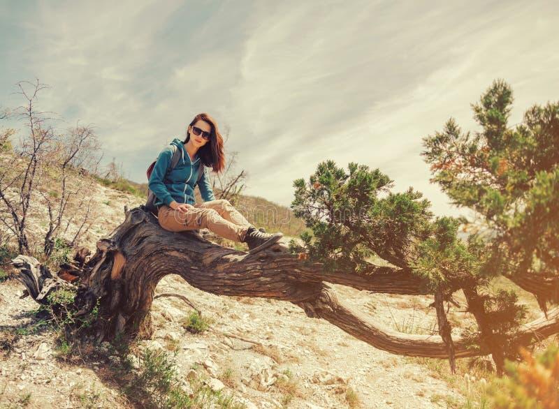 Sammanträde för ung kvinna på felikt härligt träd royaltyfria foton