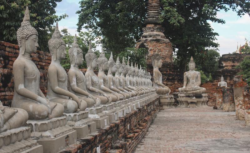 Sammanträdebuddha statyer i rad på den Wat Yai Chai Mongkhon templet i Ayutthaya, Thailand arkivbilder