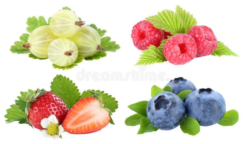 Sammlung Beerenerdbeerblaubeerbeerenobst frui stockfotografie