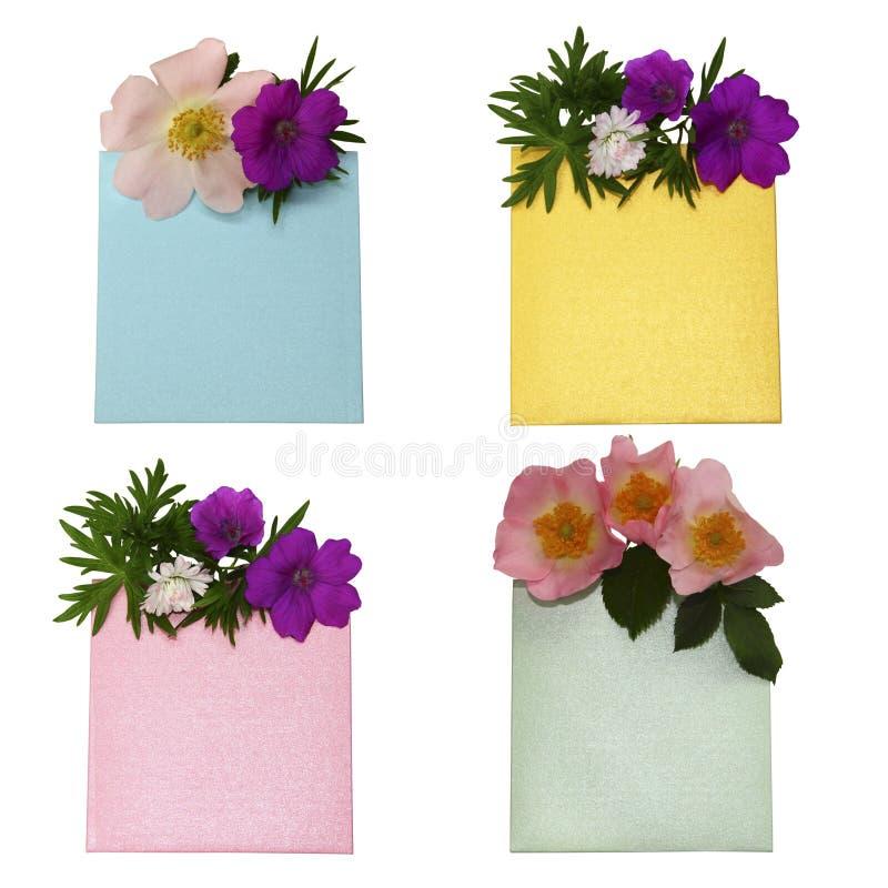 Sammlung bunte Umschläge mit den wilden Blumen lokalisiert auf w stockbilder