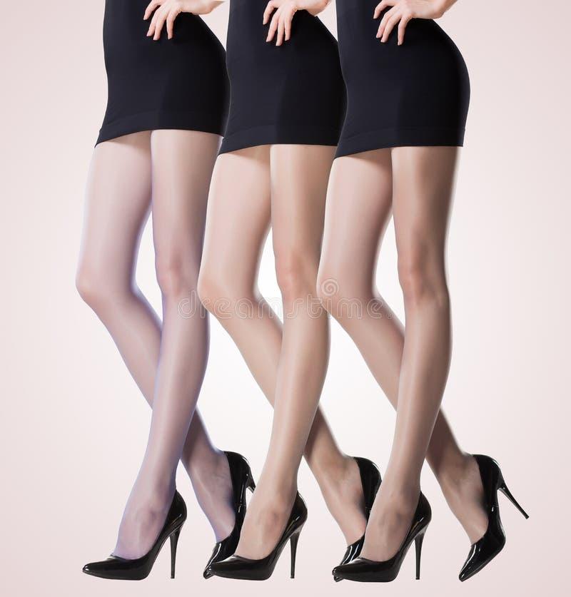 Sammlung dünne Strümpfe auf sexy Frauenbeinen stockbilder