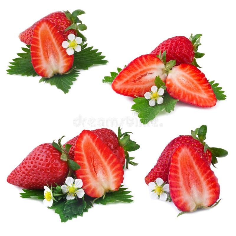 Sammlung der Erdbeere auf weißem Hintergrund lizenzfreie stockbilder