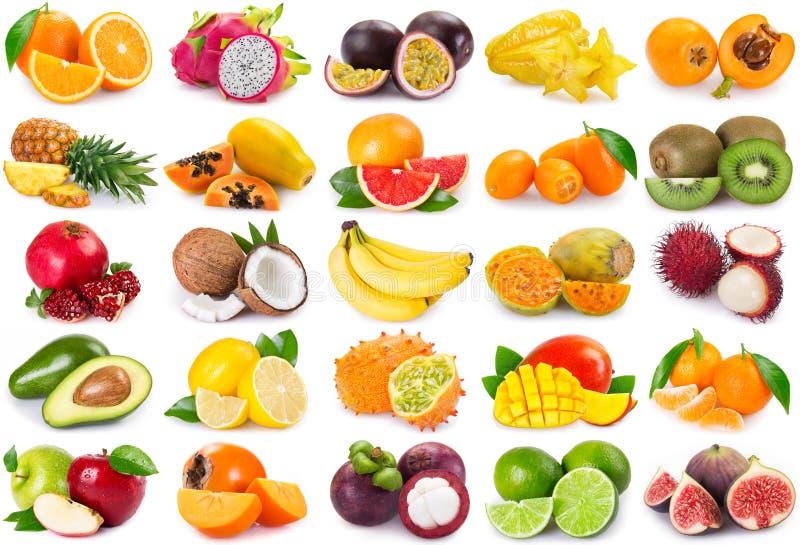 Sammlung exotische Früchte auf weißem Hintergrund stockfoto