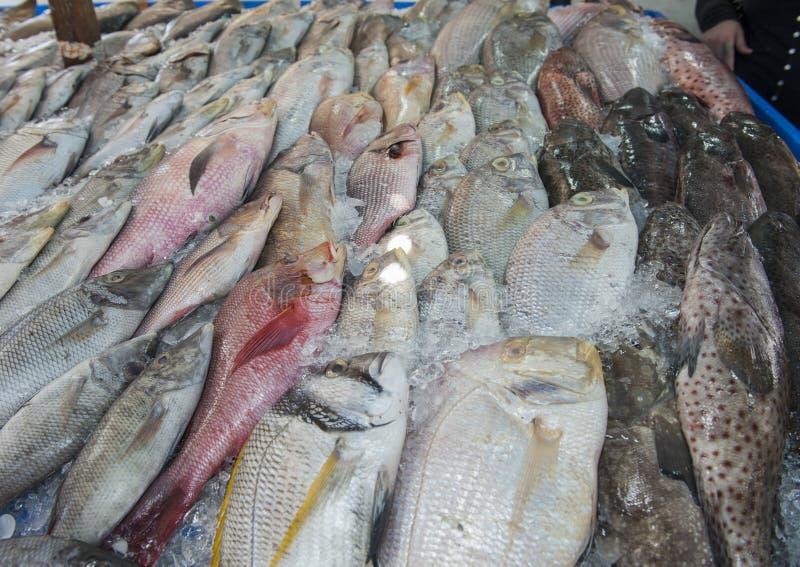Sammlung Fische auf Anzeige im traditionellen Freilichtmarkt stockfotos