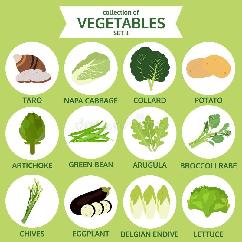 Sammlung Gemüse, Lebensmittelvektorillustration, Ikonensatz vektor abbildung