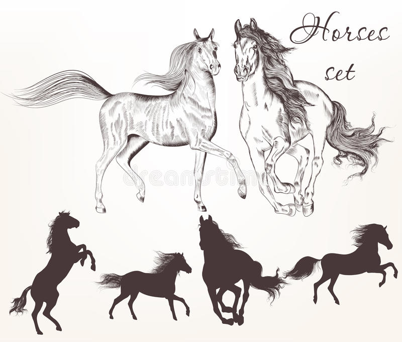 Sammlung gezeichnete Pferde des Vektors Hand lizenzfreie abbildung