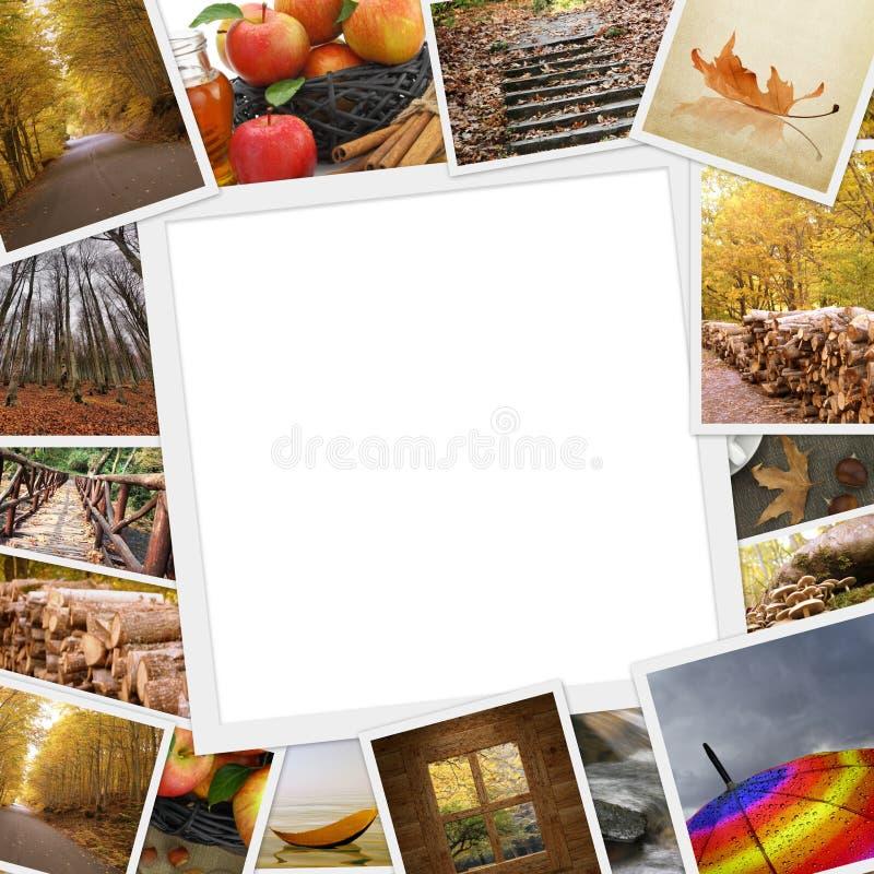 Sammlung Herbstfotos stockfotografie