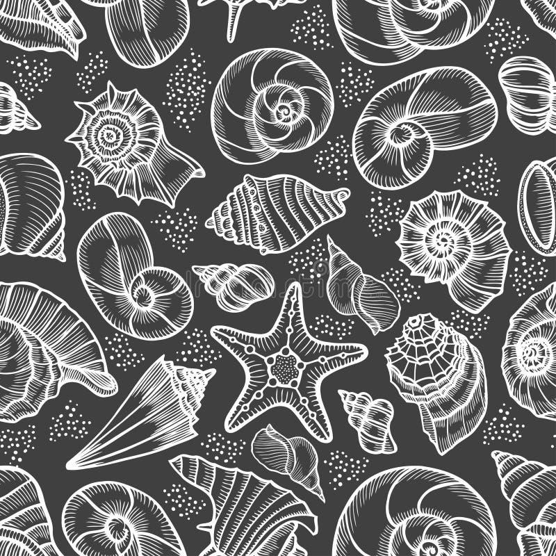 Sammlung Muscheln gezeichnet stock abbildung
