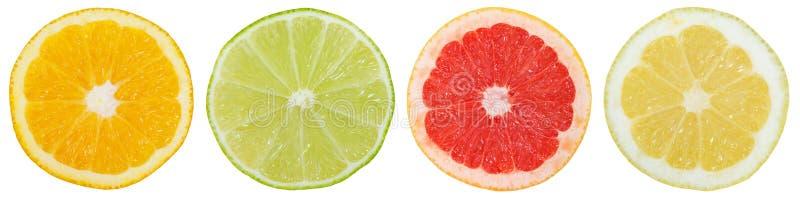 Sammlung orange Zitronenscheiben der Zitrusfrüchte in Folge geschnitten stockbild