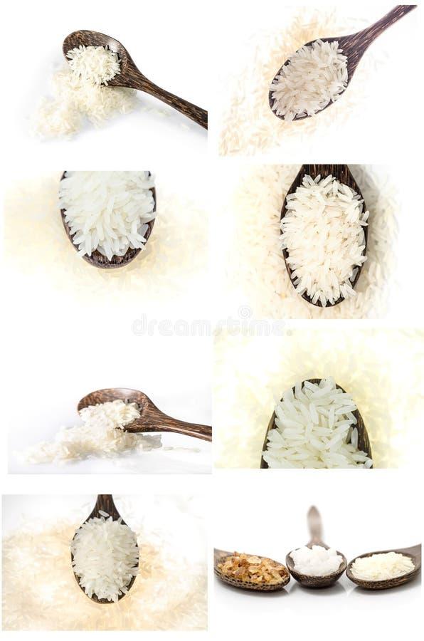 Sammlung Reiskorn im hölzernen Löffel auf weißem Hintergrund stockfoto