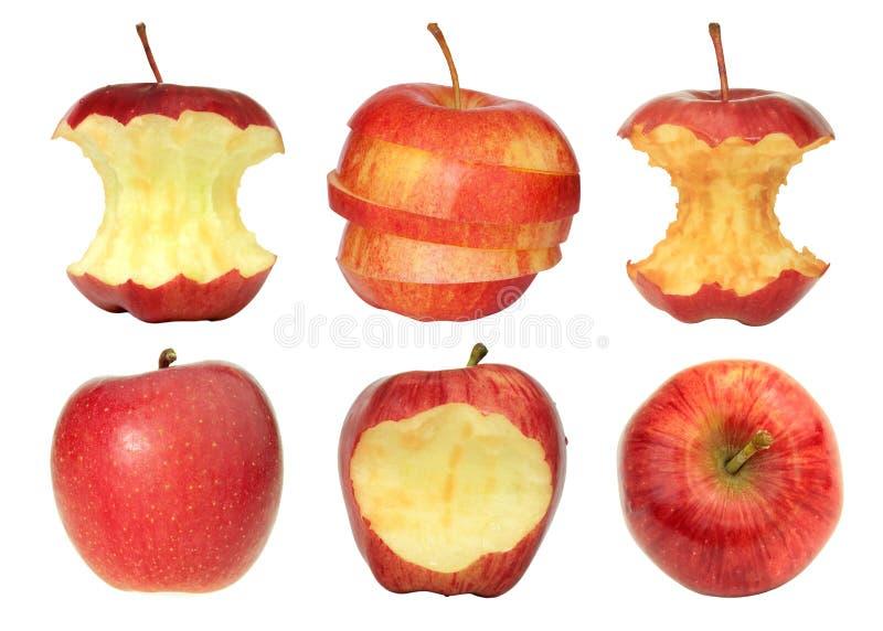 Sammlung rote Äpfel stockfoto