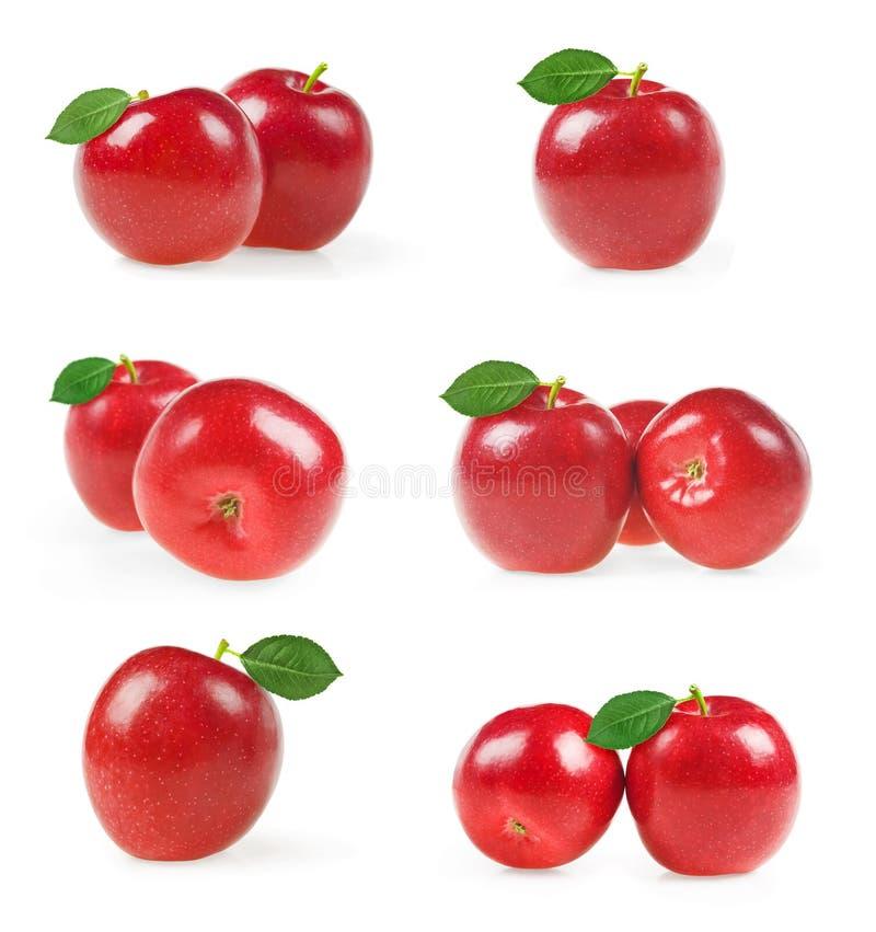 Sammlung rote Äpfel mit dem grünen Blatt lokalisiert auf weißem Hintergrund stockbilder