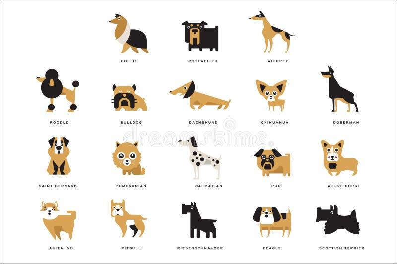 Sammlung verschiedene Hundezuchtcharaktere und Beschriftung züchten in englischen Vektor Illustrationen stock abbildung