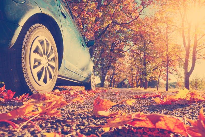 Samochód na asfaltowej drodze w jesieni zdjęcie royalty free