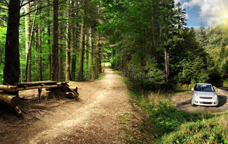 samochodowe lasowe góry parkowali strasznego zdjęcia stock