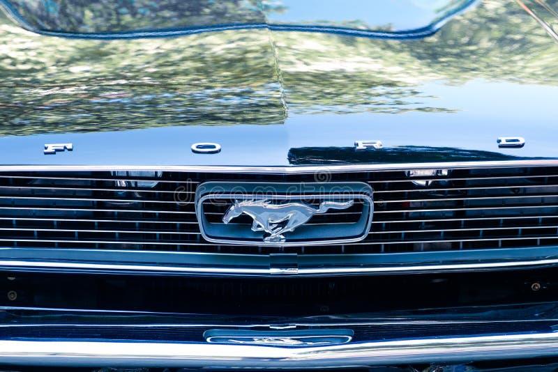 Samochodu przodu projekta FORD i szczegółu mustanga logo, gatunku imienia clos/ zdjęcia royalty free