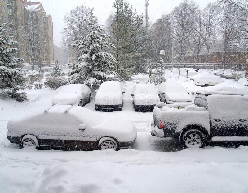 Samochody zakrywający śniegiem obraz royalty free