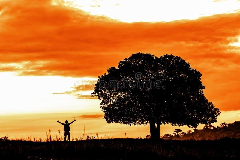 Samodzielny drzewo na trawy polu z mężczyzna pozycją pobliską i podnosi dwa ręki z w górę tła obraz stock