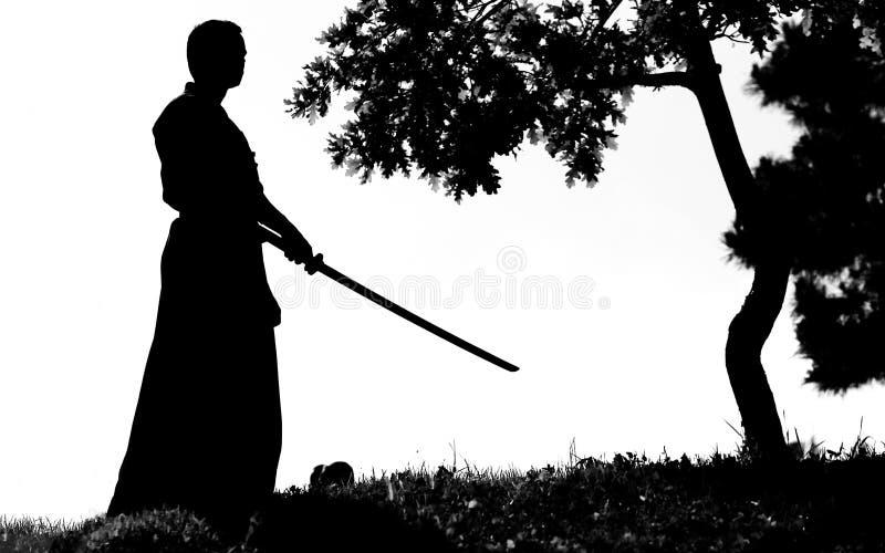 Samoeraien royalty-vrije stock afbeeldingen