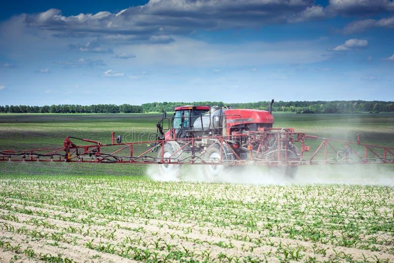 Samojezdna natryskownica robi herbicydowi na polu młoda kukurudza fotografia royalty free