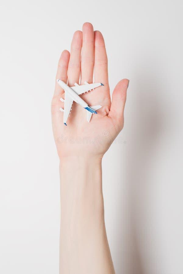 Samolot na ?e?skiej palmie na lekkim tle Poj?cie bezpieczni loty zdjęcia stock