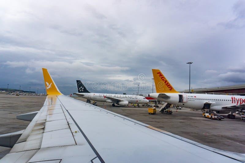 Samolot taxiing w Istanbuł Sabiha Gokcen lotnisku międzynarodowym w wczesnym poranku Pegasus Airlines fotografia royalty free