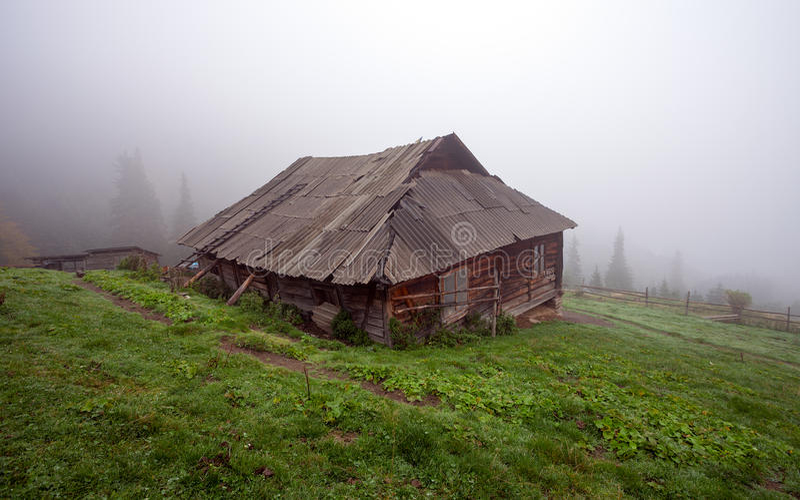Samotna kabina w drewnach fotografia stock
