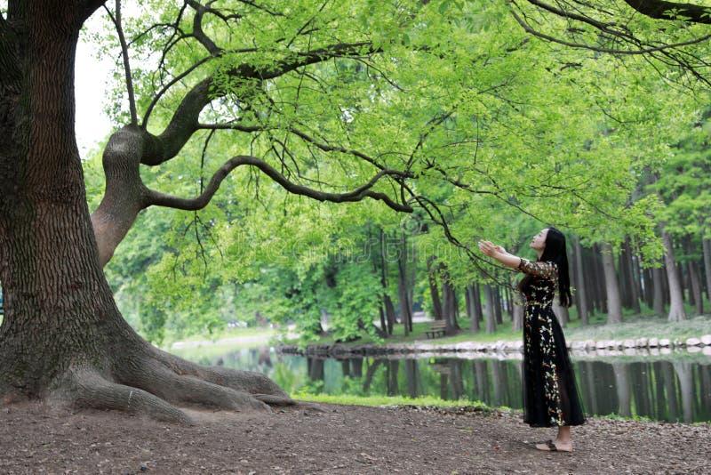 Samotna kobieta pod du?ym okwitni?cia drzewem cieszy? si? charakter zdjęcie stock