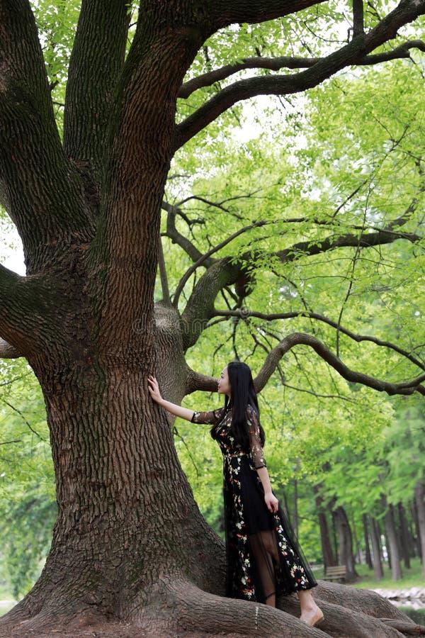 Samotna kobieta pod du?ym okwitni?cia drzewem zdjęcia stock